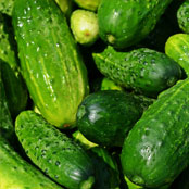 blog_may_cucumbers
